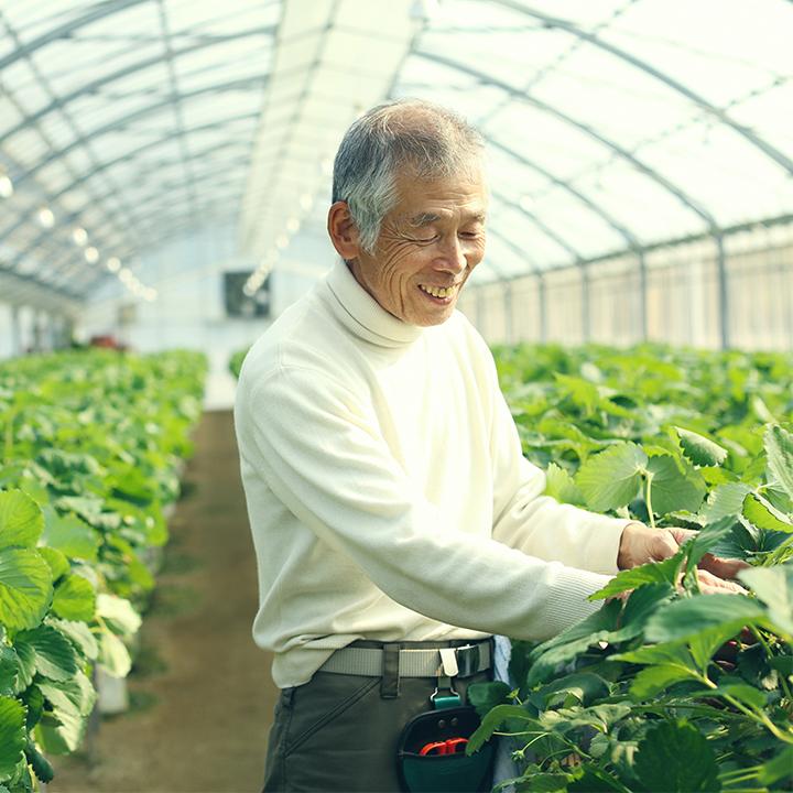 他出力 你出錢,幫助在地小農讓台灣更好